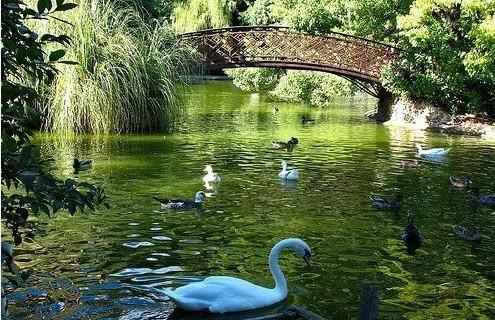 meravigliosi giardini villa durazzo fito