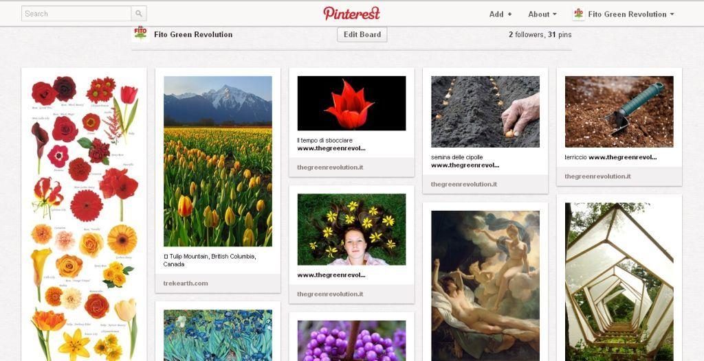 Fito the green revolution Pinterest
