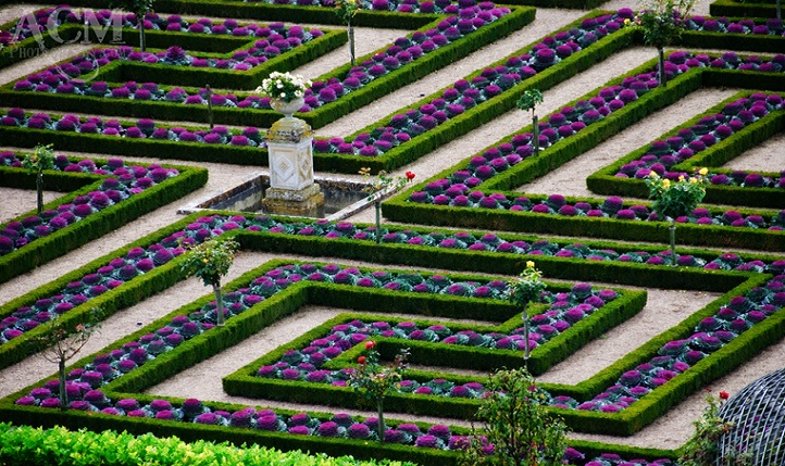 chateau-villandry-garden-1