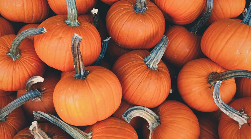 Come Fare Una Zucca Di Halloween Vera.Come Fare Una Perfetta Zucca Di Halloween Fito