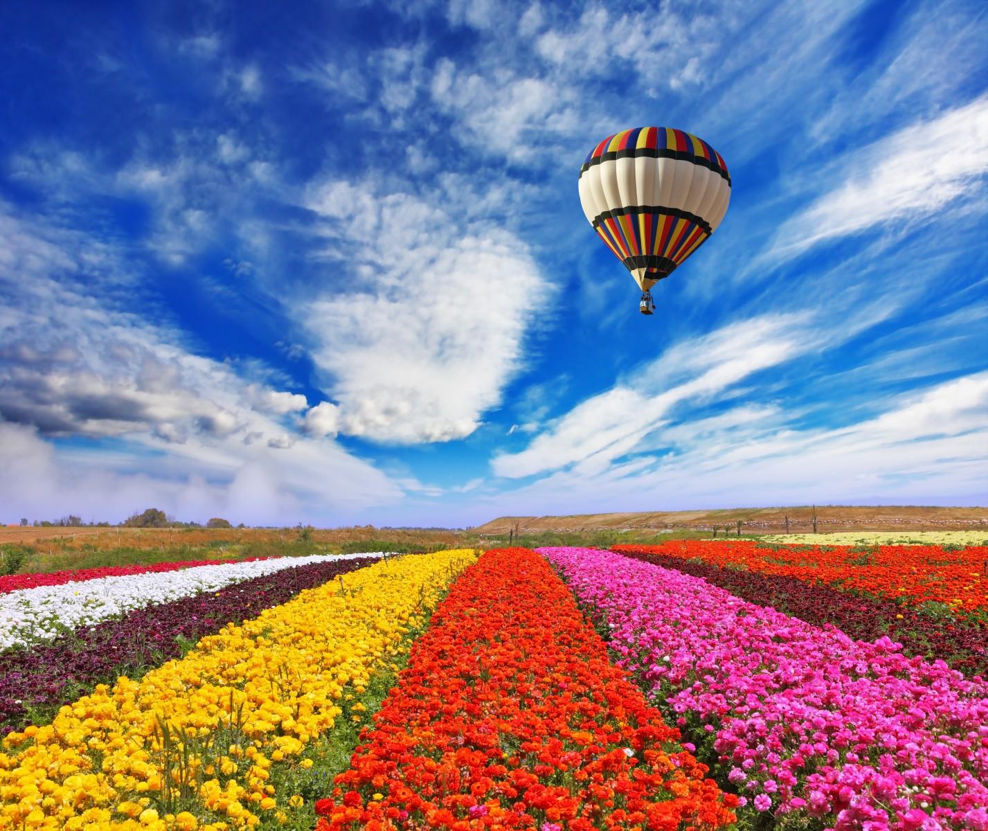 Primavera in arrivo sfondi collection 9 wallpapers for Immagini primavera desktop