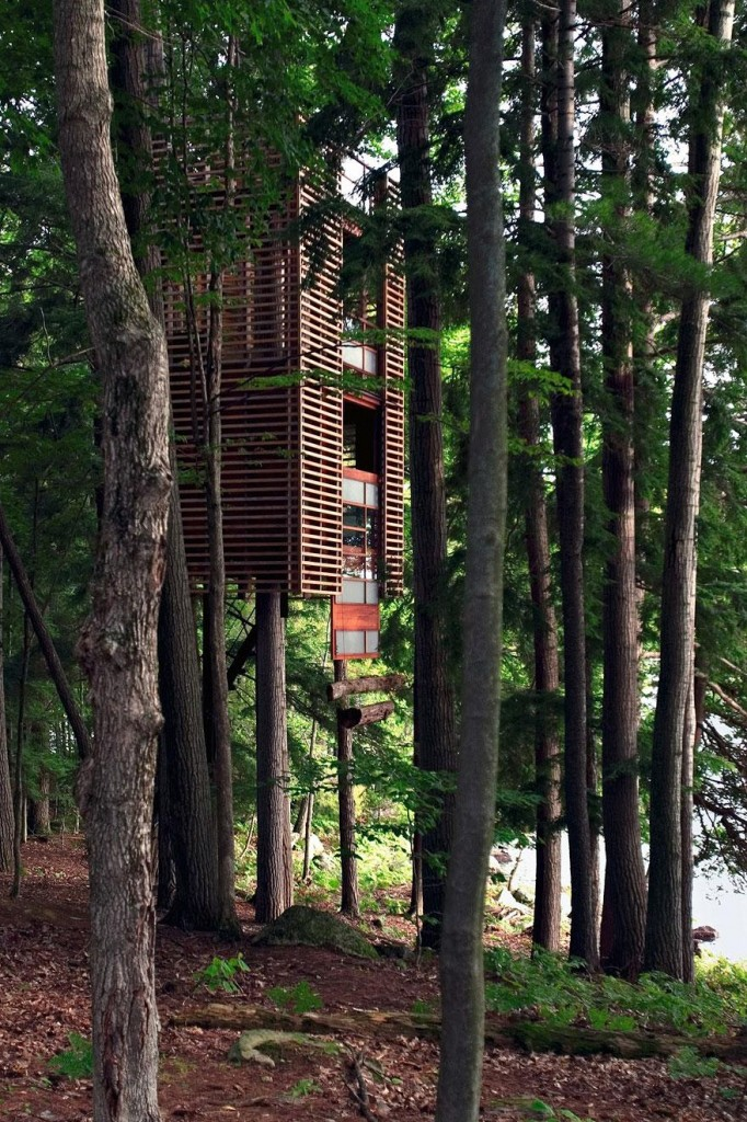 amazing-treehouses-2