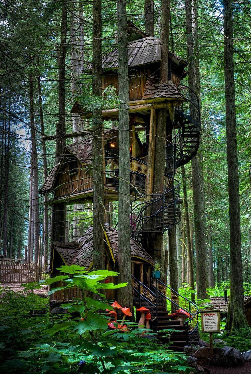 Le 10 case sull 39 albero pi belle del mondo fito for Planimetrie della casa sull albero