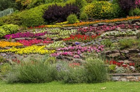 Meravigliosi giardini fito for Giardini meravigliosi