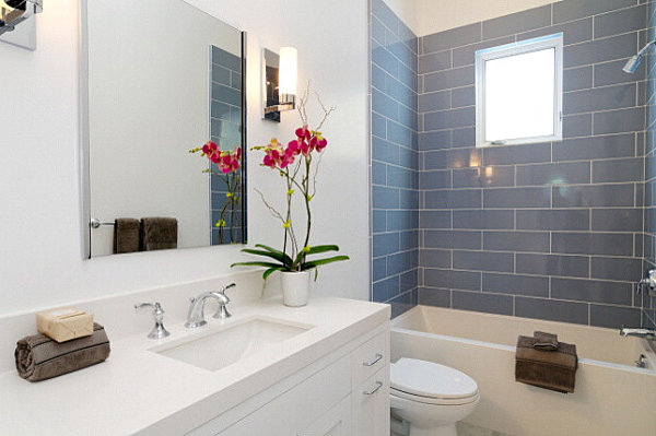 Orchids-are-ideal-bathroom-plants