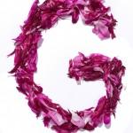 Alfabeto fatto con fiori