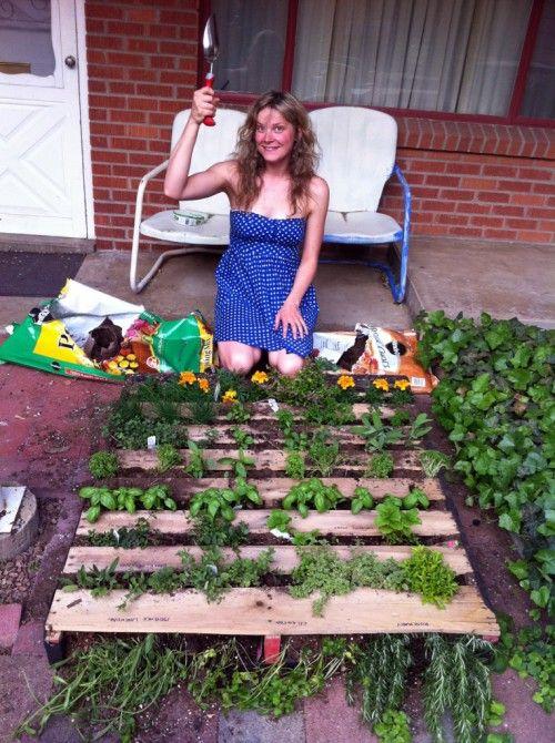 Mini guida per costruire un orto verticale fito - Jardin vertical con palets ...