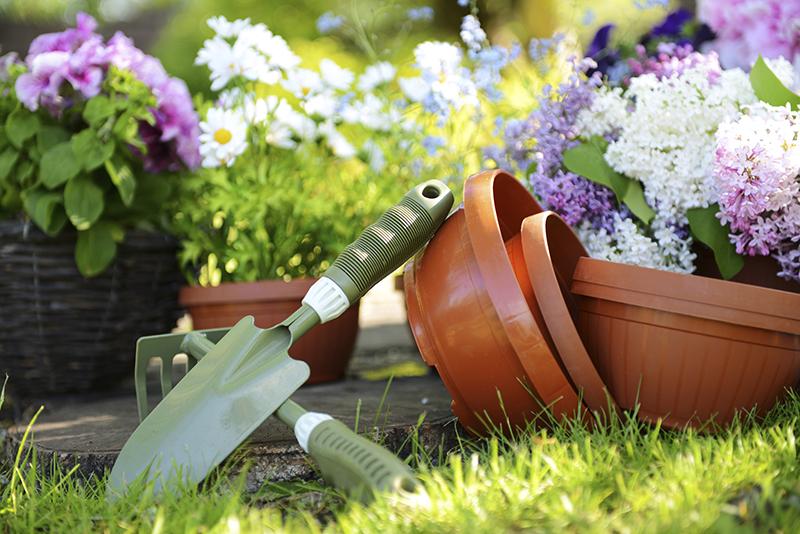 Vasi strumenti giardino