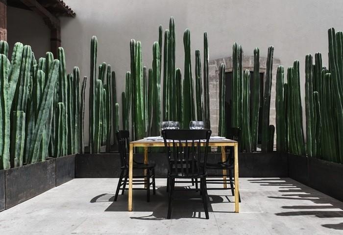 Montero-Terrace_0_0