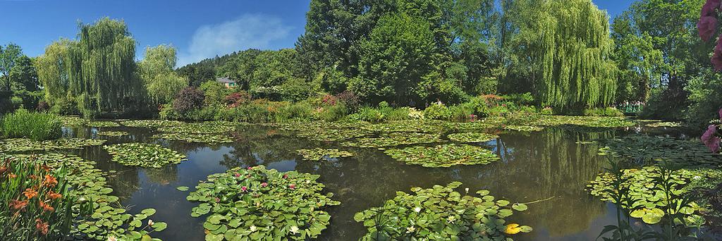 Lago con ninfee nel giardino giverny