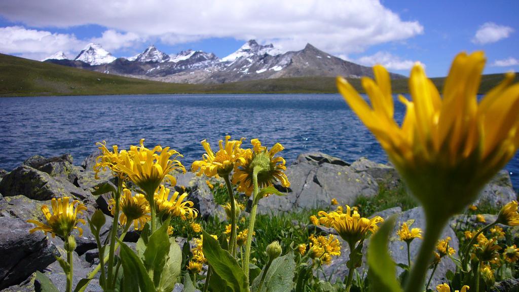 Panorama di montagna e lago
