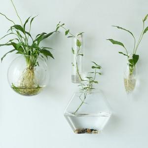 Vasi in vetro trasparente da appendere