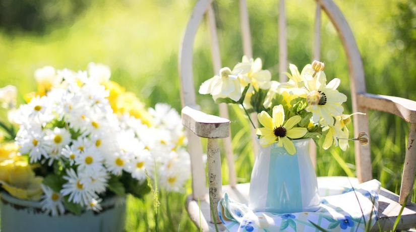 Calendario Piante Orto.Maggio In Giardino In Casa E Nell Orto Calendario Dei