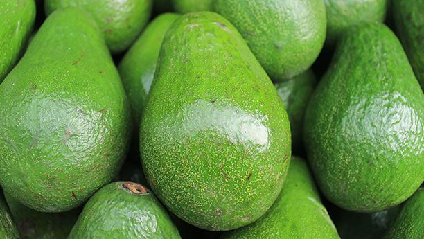 Insieme di frutti di avocado