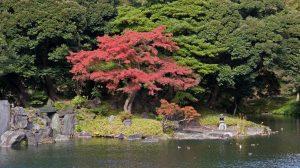 Koishikawa Korakuen Gardens, Tokyo (Giappone)