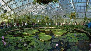 Kew Gardens, Londra (Inghilterra)