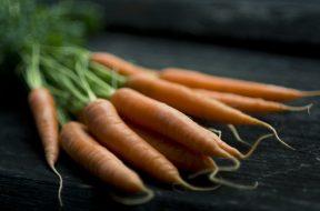Gruppo di carote con radice