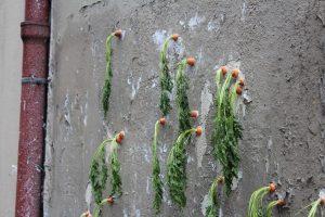 Installazione artistica con carote nei muri delle designer Nina Ballay e Anna Pierre dello Studio Objet Augmenté