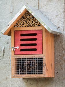Come cotruire una casa per gli insetti utili