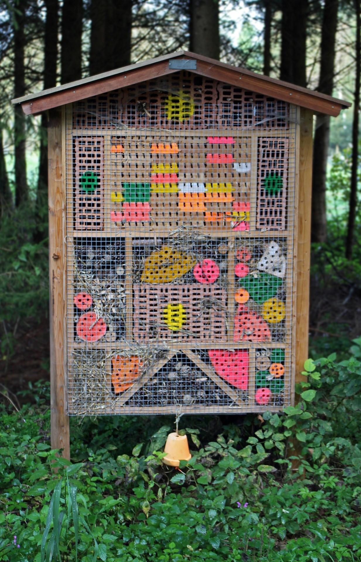 Costruisci una casa per gli insetti utili fito for Come costruisci una casa