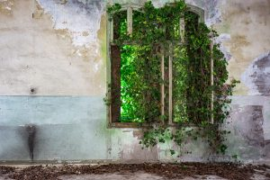 La natura incontra l'architettura di JAMES KERWIN PHOTOGRAPHIC 2016