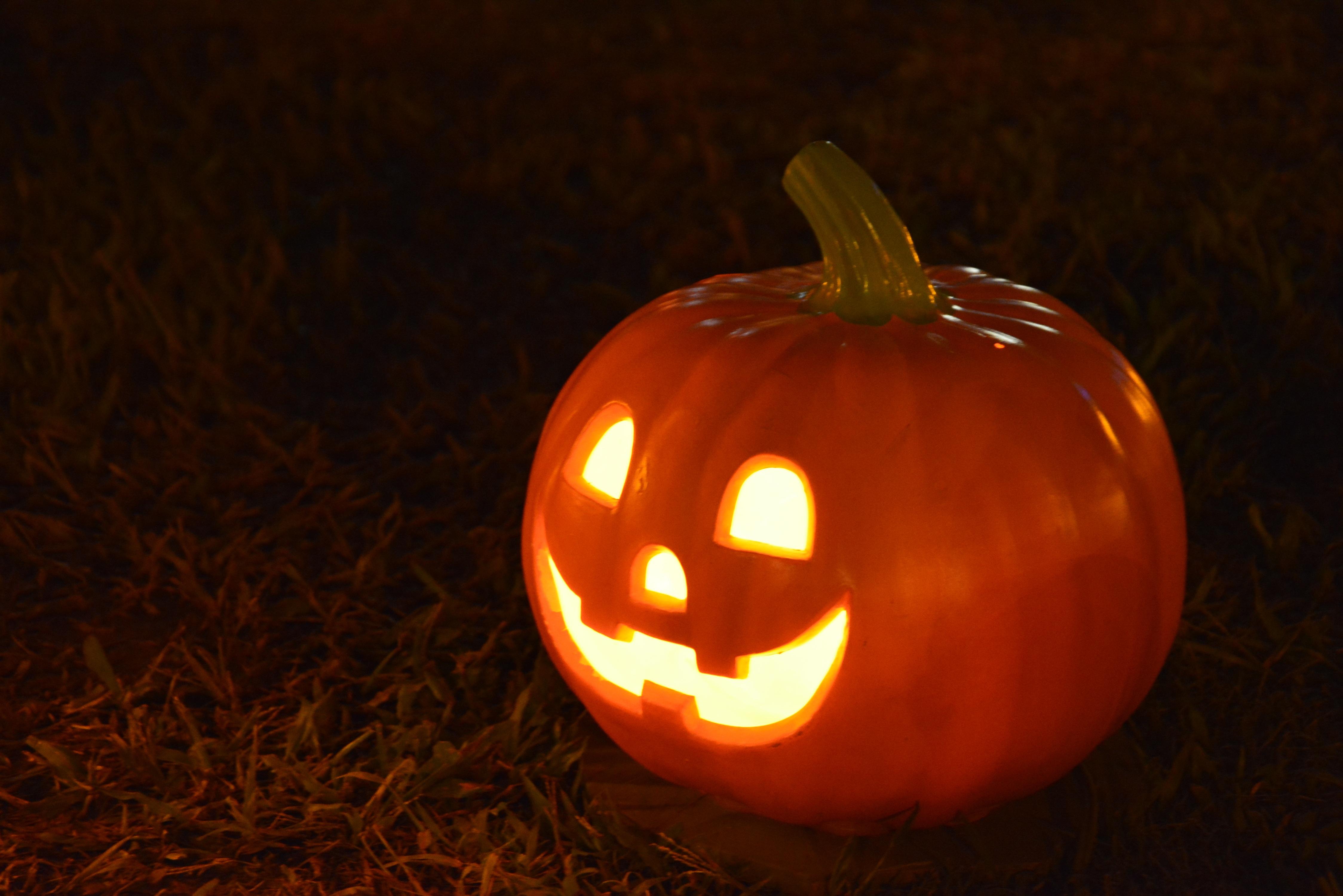 Come fare una zucca di halloween fai da te fito for Zucca di halloween fai da te