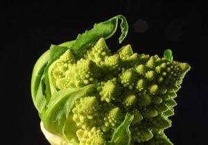 Broccolo romanesco, frattale