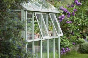 Riparare le piante per proteggerle dal freddo
