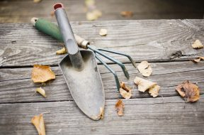 I lavori nell'orto a novembre si focalizzano soprattutto sulla vangatura e sulla concimazione