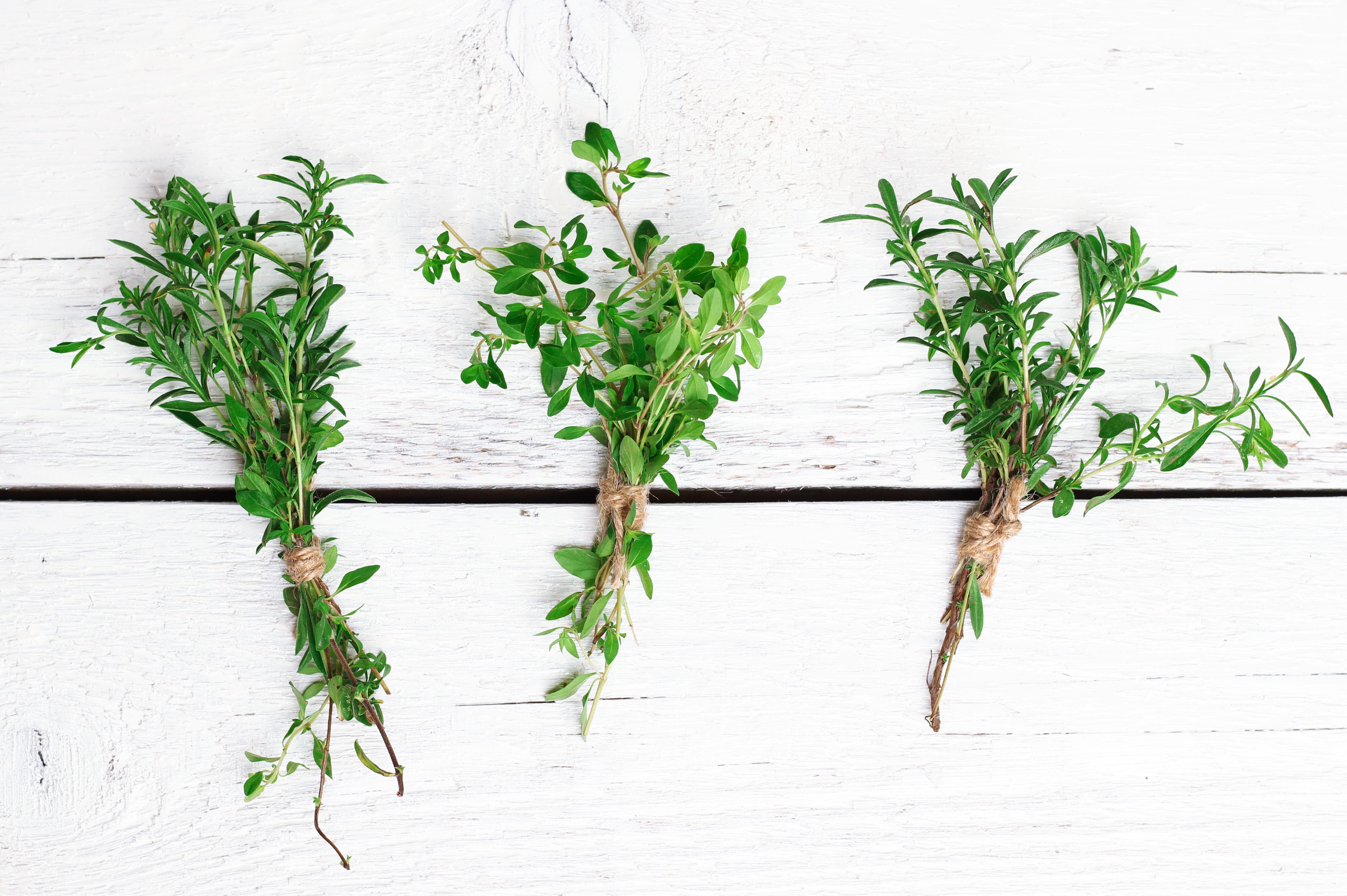 5 consigli per coltivare le aromatiche in inverno fito - Coltivare piante aromatiche in casa ...