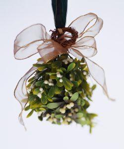 Vischio pianta portafortuna