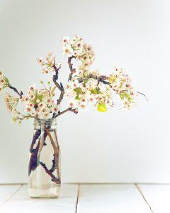 Ikebana l'arte giapponese 05