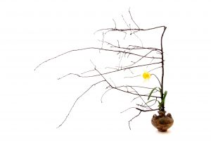 Ikebana l'arte giapponese 07