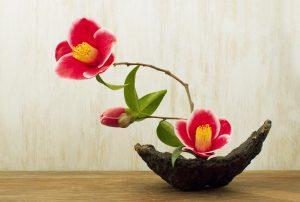 Ikebana l'arte giapponese 09