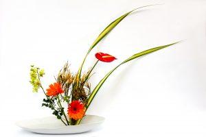 Ikebana l'arte giapponese 10
