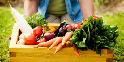 Come piantare gli ortaggi senza avere i semi