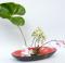 Ikebana l arte giapponese di disporre i fiori 01