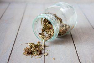 Stevia dried leaves in a jar