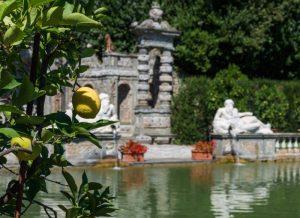 il parco di villa Merlia (1)