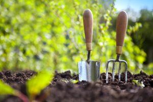 Aceto in giardino pulire gli attrezzi