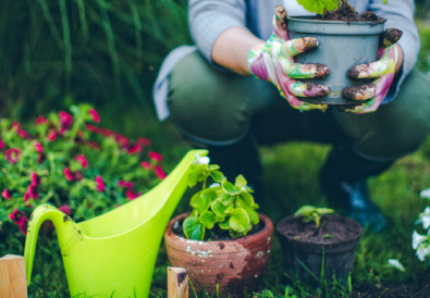 I lavori di ottobre in casa in giardino nell 39 orto e nel - Lavori in giardino ...