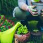 Lavori in giardino a marzo