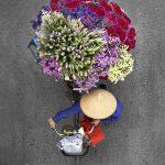 Loes Heerink, bici fiori vietnam 1