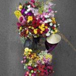 Loes Heerink, bici fiori vietnam 5