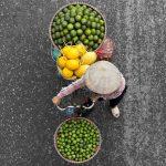 Loes Heerink, bici fiori vietnam 6