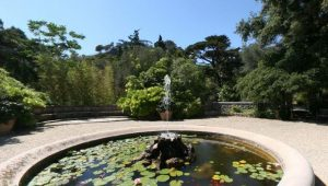 Giardini Hanbury_3