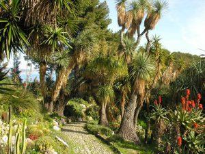 Giardini Hanbury_9