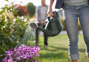 Come eliminare erbacce senza diserbante_3