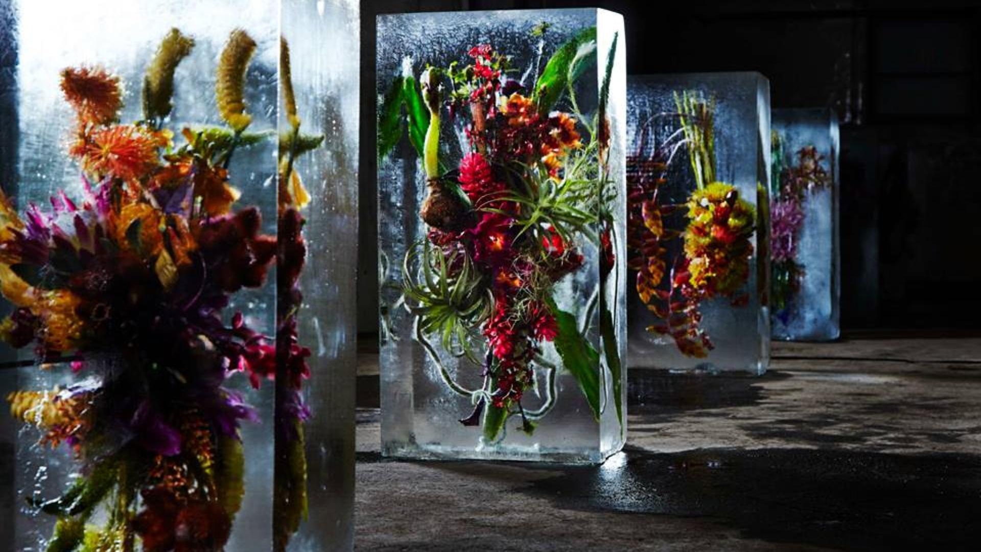 Makoto Azuma iced flower (3)