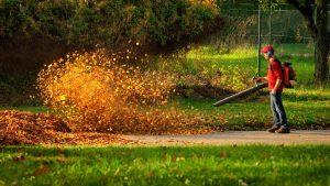 raccogliere foglie autunnali